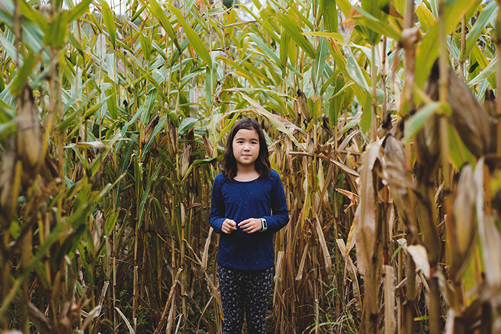 The Maize at Little Darby Creek - Field of Fright