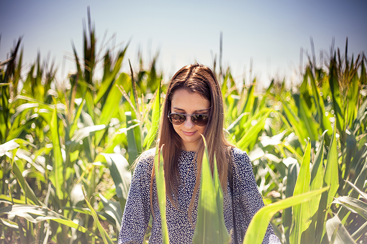 Brown Farm Corn Maze