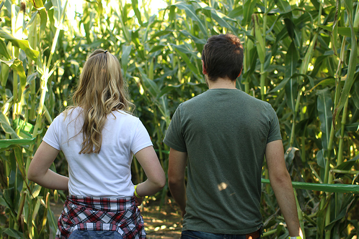 Poppin Corn Maze at S&H Campground