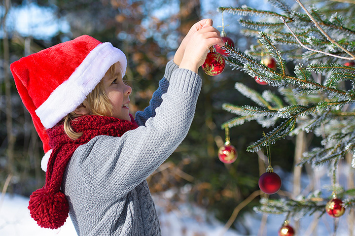 Wishing Star Farms Choose-and-Cut Christmas Trees